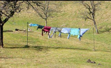洗濯物が風になびく写真