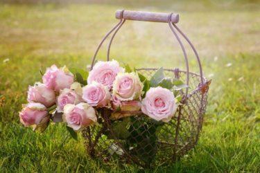 出口がない。閉塞感。幸せって何だろう?と思ったら読んでみて|アンネの童話「花売り娘のクリスタちゃん」