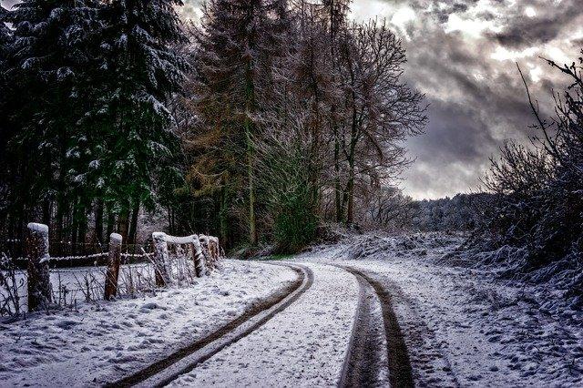 雪道とタイヤの跡の写真